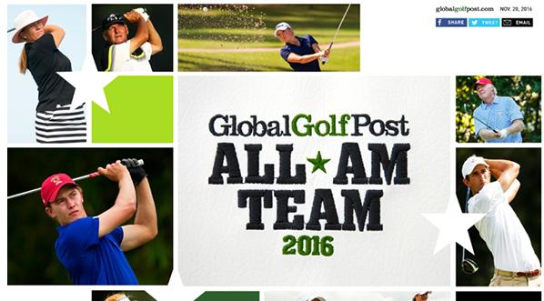 Seven Georgians land on 2016 All-Amateur team
